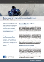 Flyer GuV- / Bilanzreport